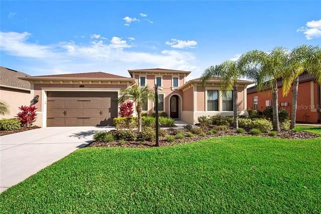 28671 Tavira Court, Wesley Chapel, FL 33543 (MLS #U8078489) :: Team Bohannon Keller Williams, Tampa Properties