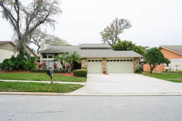1457 Rolling Ridge Road, Palm Harbor, FL 34683 (MLS #U8078520) :: Griffin Group