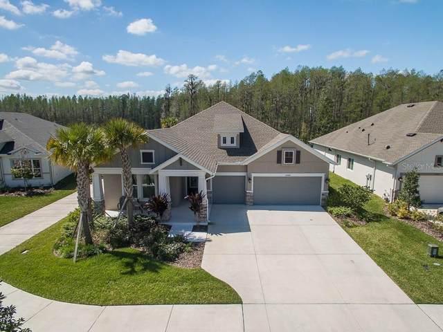 15440 Aviles Parkway, Odessa, FL 33556 (MLS #U8078649) :: Team Bohannon Keller Williams, Tampa Properties