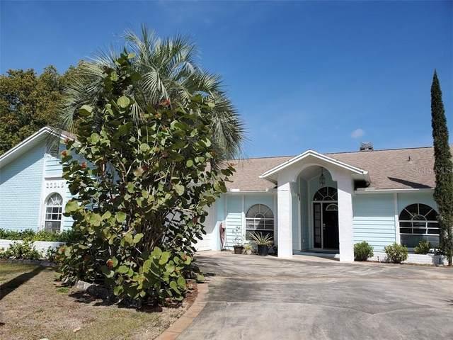 23315 Shining Star Drive, Land O Lakes, FL 34639 (MLS #U8078789) :: Premier Home Experts