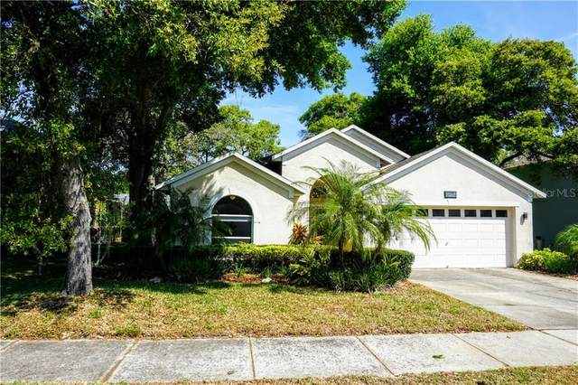 809 Duval Court, Safety Harbor, FL 34695 (MLS #U8079031) :: Team Borham at Keller Williams Realty