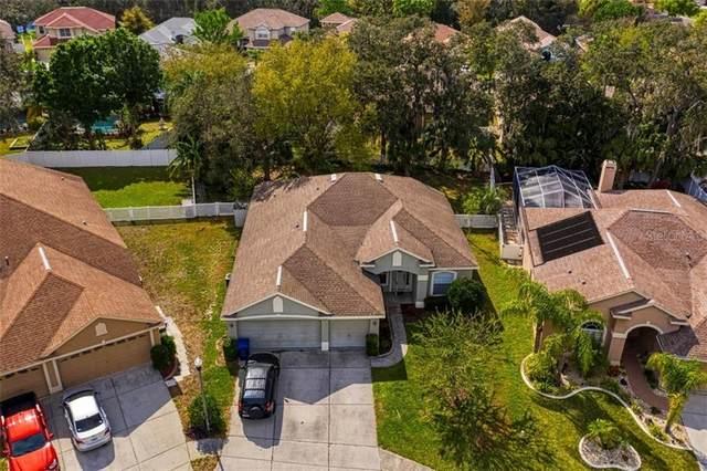 1945 Fern Ridge Court, Holiday, FL 34691 (MLS #U8079056) :: Premium Properties Real Estate Services