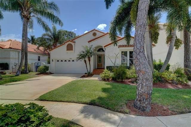 2880 La Concha Drive, Clearwater, FL 33762 (MLS #U8079082) :: Team Borham at Keller Williams Realty