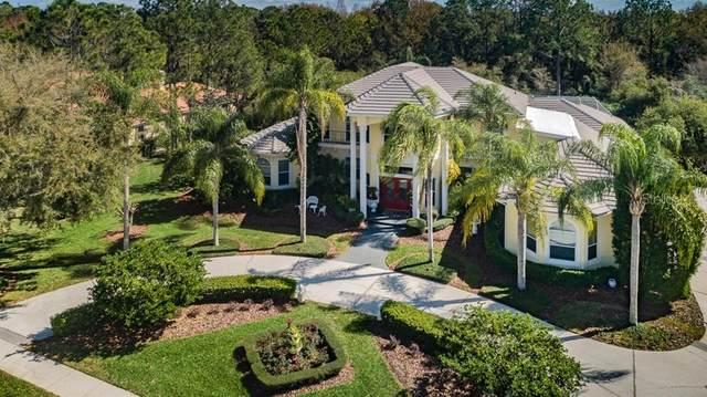 18135 Longwater Run Drive, Tampa, FL 33647 (MLS #U8079119) :: Team Bohannon Keller Williams, Tampa Properties