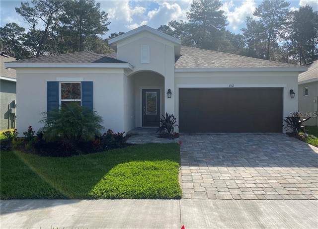 11502 Tanner Ridge Place, Riverview, FL 33569 (MLS #U8079208) :: The Duncan Duo Team