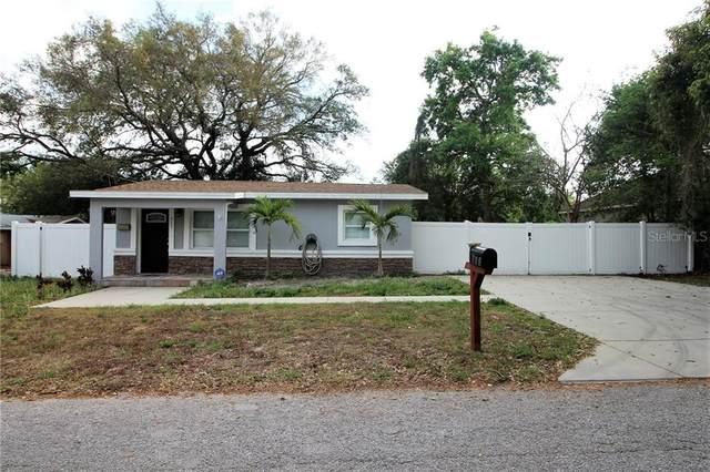 813 Lexington Boulevard, Tampa, FL 33612 (MLS #U8079370) :: Griffin Group