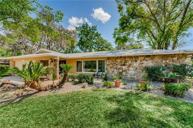 12219 Wood Duck Place, Temple Terrace, FL 33617 (MLS #U8079455) :: Griffin Group