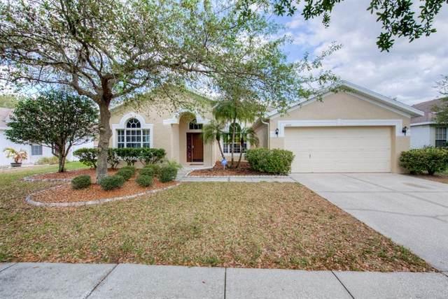 5507 Lake Leta Blvd, Tampa, FL 33624 (MLS #U8079568) :: Kendrick Realty Inc
