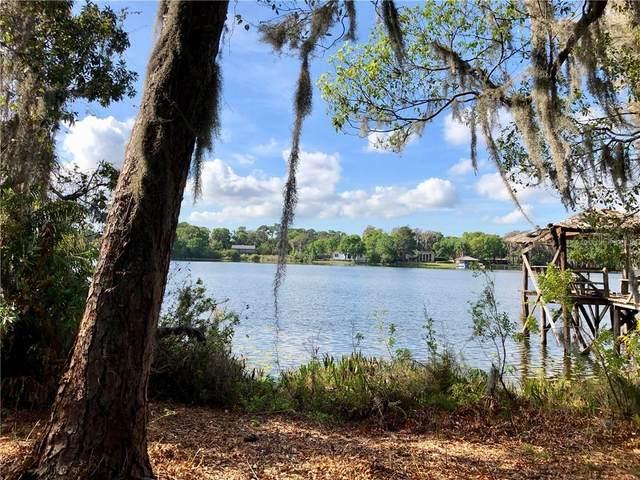 16604 Boy Scout Road, Odessa, FL 33556 (MLS #U8079798) :: Team Bohannon Keller Williams, Tampa Properties
