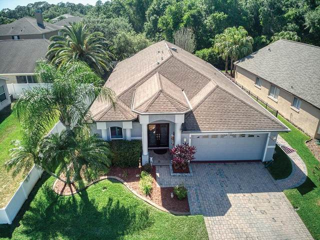 303 Bay Arbor Boulevard, Oldsmar, FL 34677 (MLS #U8079960) :: Team Borham at Keller Williams Realty