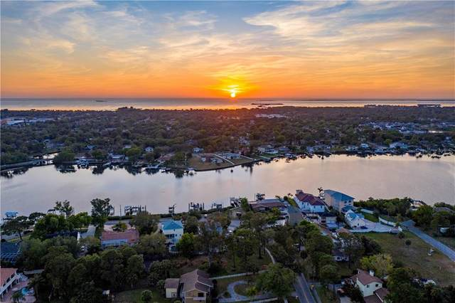465 Riverside Drive, Tarpon Springs, FL 34689 (MLS #U8079982) :: Team Borham at Keller Williams Realty