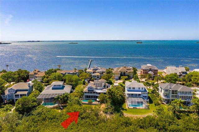 953 Point Seaside Drive, Crystal Beach, FL 34681 (MLS #U8079985) :: GO Realty