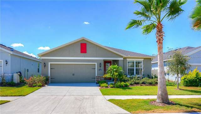 11128 Spring Point Circle, Riverview, FL 33579 (MLS #U8080066) :: Team Bohannon Keller Williams, Tampa Properties
