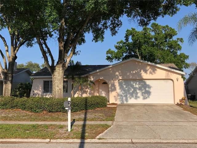 2175 Citrus Hill Road, Palm Harbor, FL 34683 (MLS #U8080221) :: Griffin Group