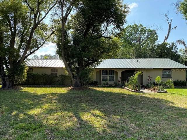 224 W County Line Road, Lutz, FL 33548 (MLS #U8080226) :: Griffin Group