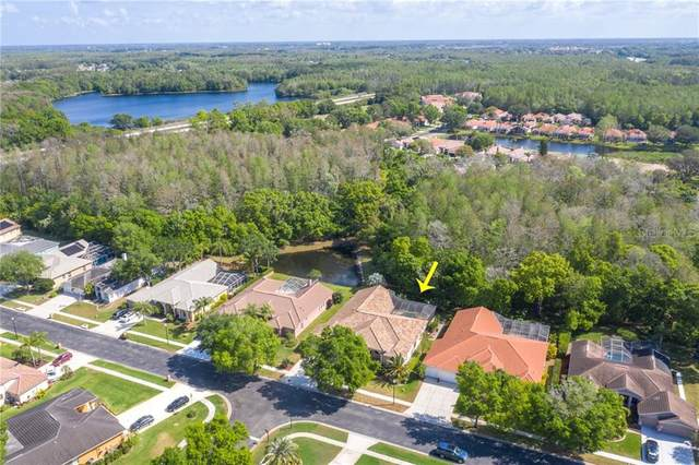 1257 Kings Way Lane, Tarpon Springs, FL 34688 (MLS #U8080250) :: The Robertson Real Estate Group