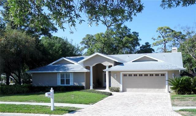 1391 Indian Trail S, Palm Harbor, FL 34683 (MLS #U8080381) :: Griffin Group