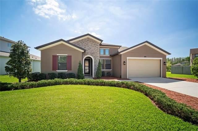 4350 Ortona Lane, Wesley Chapel, FL 33543 (MLS #U8080479) :: The Duncan Duo Team