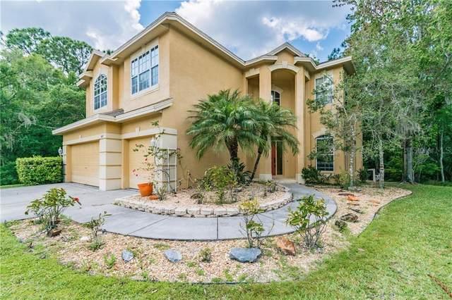 587 Lakewood Drive, Oldsmar, FL 34677 (MLS #U8080502) :: Premium Properties Real Estate Services