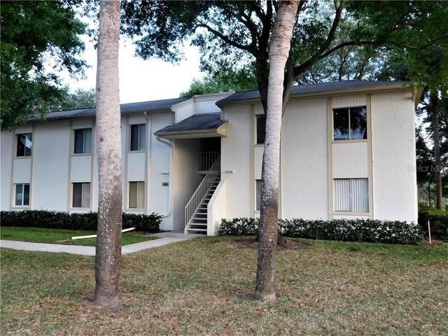 103 Pine Court, Oldsmar, FL 34677 (MLS #U8080507) :: Team Borham at Keller Williams Realty