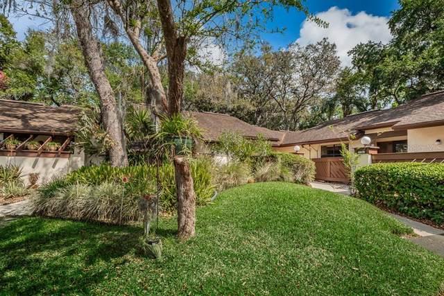4026 Corkwood Court, Palm Harbor, FL 34684 (MLS #U8080540) :: Premium Properties Real Estate Services