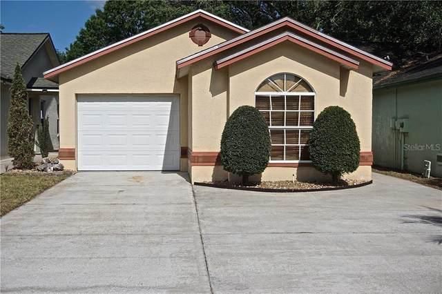4402 Venice Drive, Land O Lakes, FL 34639 (MLS #U8080545) :: Premier Home Experts