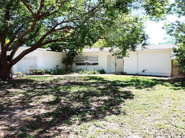 1937 Palm Drive, Clearwater, FL 33763 (MLS #U8080631) :: Bustamante Real Estate