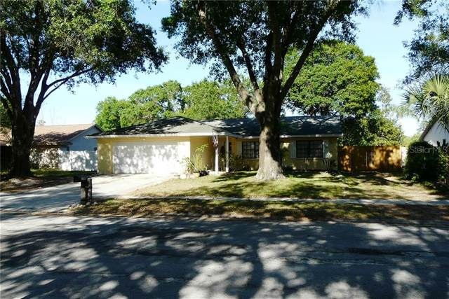 1336 Edgewater Court, Lutz, FL 33559 (MLS #U8080716) :: Team Borham at Keller Williams Realty