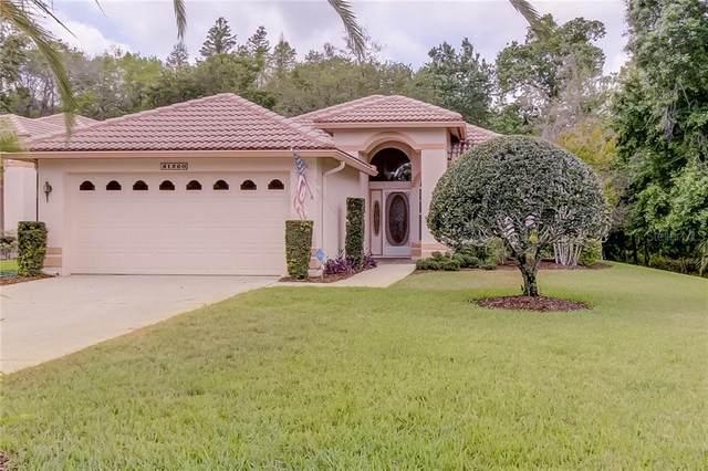 1260 Lindenwood Drive, Tarpon Springs, FL 34688 (MLS #U8080724) :: Bustamante Real Estate