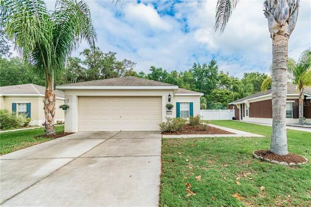 14663 Wake Robin Drive, Brooksville, FL 34604 (MLS #U8080728) :: Keller Williams Realty Peace River Partners