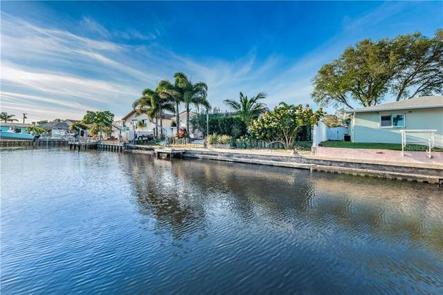 217 Driftwood Drive N, Palm Harbor, FL 34683 (MLS #U8080778) :: EXIT King Realty