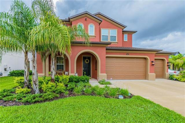 4043 Empoli Court, Wesley Chapel, FL 33543 (MLS #U8080801) :: Griffin Group