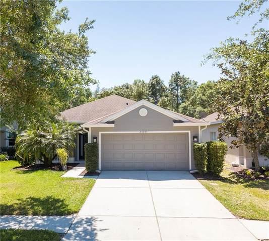 20143 Bay Cedar Avenue, Tampa, FL 33647 (MLS #U8080806) :: Kendrick Realty Inc