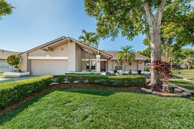 2900 Pinewood Run, Palm Harbor, FL 34684 (MLS #U8080853) :: EXIT King Realty