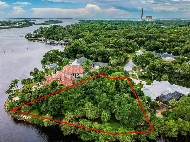 1600 Meyers Cove Drive, Tarpon Springs, FL 34689 (MLS #U8080858) :: Griffin Group