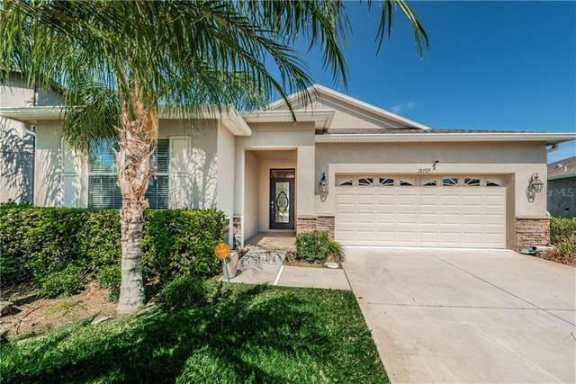 18729 Burndall Court, Land O Lakes, FL 34638 (MLS #U8080883) :: Griffin Group