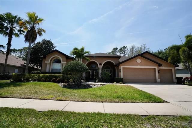4474 Rockwood Drive, Palm Harbor, FL 34685 (MLS #U8080999) :: Premium Properties Real Estate Services