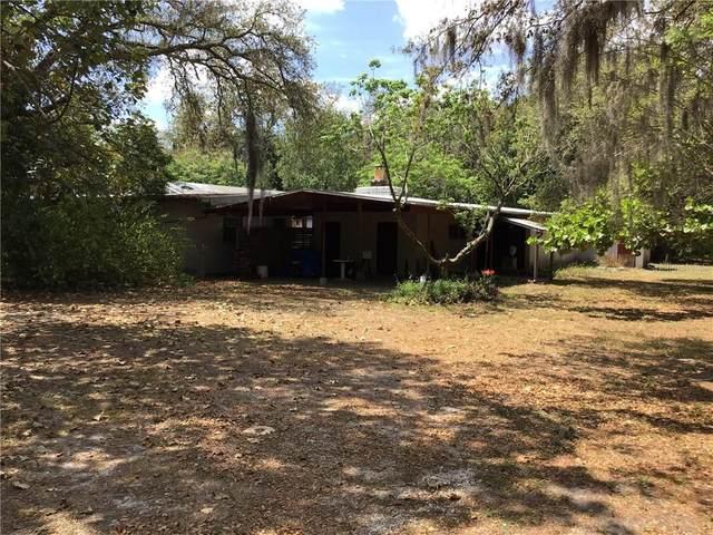 3636 Fisher Road, Palm Harbor, FL 34683 (MLS #U8081101) :: Lock & Key Realty