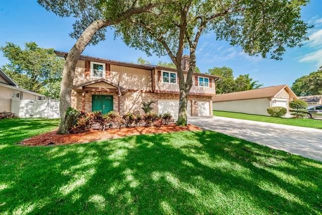 3323 Briarwood Circle, Safety Harbor, FL 34695 (MLS #U8081265) :: Charles Rutenberg Realty