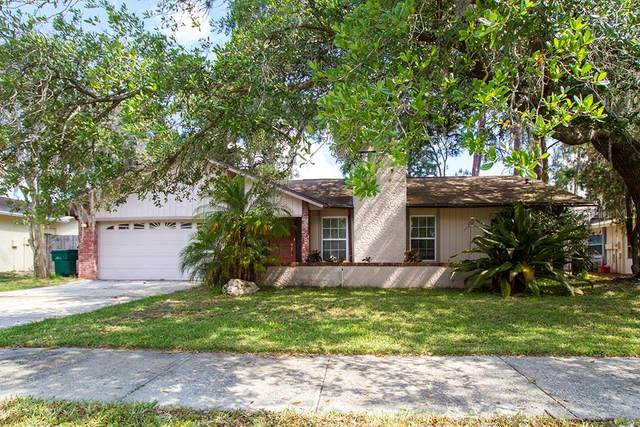 3606 Fairway Forest Drive, Palm Harbor, FL 34685 (MLS #U8081314) :: Lock & Key Realty