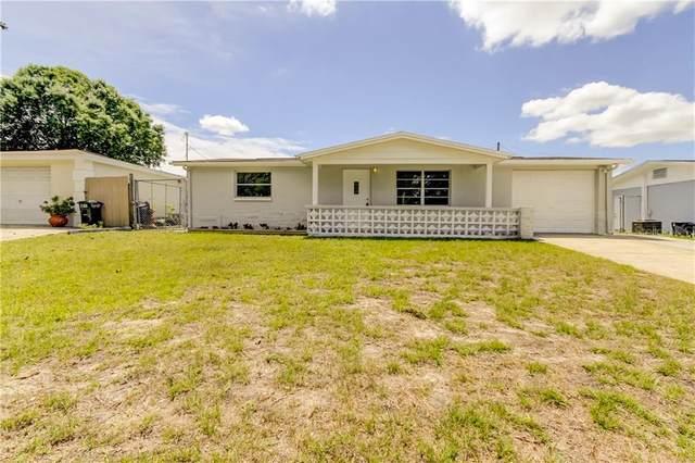5412 Portola Avenue, New Port Richey, FL 34652 (MLS #U8081356) :: The Duncan Duo Team