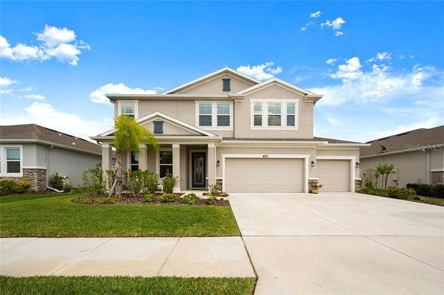 32090 Goddard Drive, Wesley Chapel, FL 33543 (MLS #U8081375) :: Godwin Realty Group