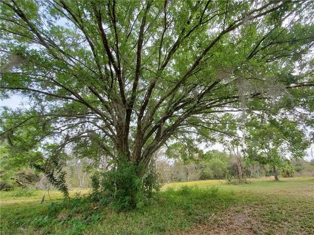 901 Goldie Park Lane, Lutz, FL 33548 (MLS #U8081410) :: Rabell Realty Group