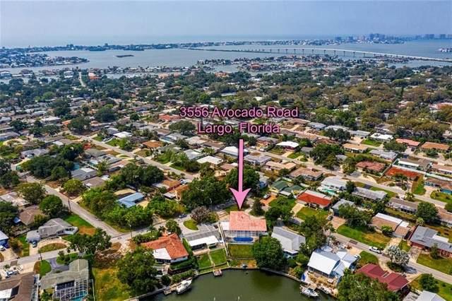 3556 Avocado Road, Largo, FL 33770 (MLS #U8082165) :: Team Bohannon Keller Williams, Tampa Properties