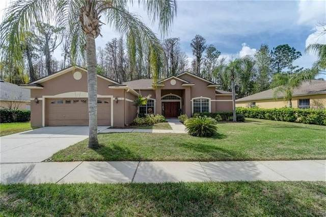 Address Not Published, Odessa, FL 33556 (MLS #U8082929) :: Team Bohannon Keller Williams, Tampa Properties