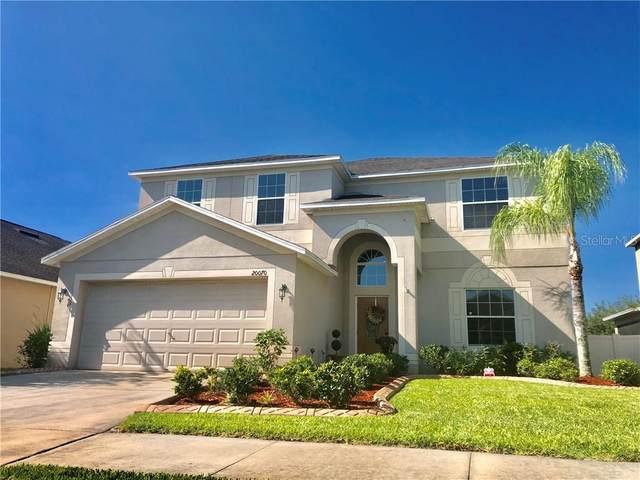 20070 Oakflower Avenue, Tampa, FL 33647 (MLS #U8083033) :: Cartwright Realty