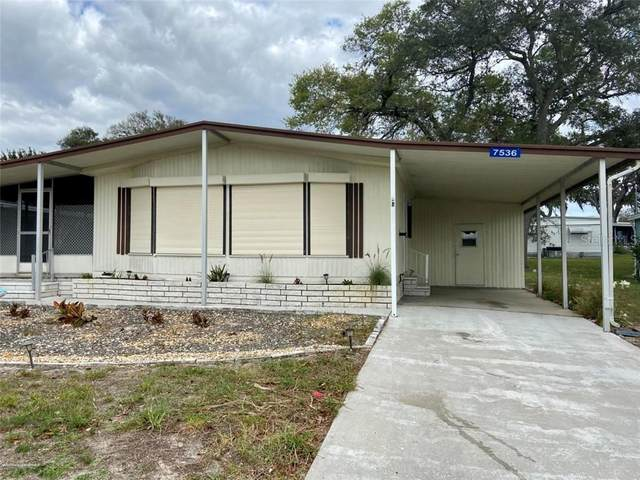 7536 First Circle Drive, Brooksville, FL 34613 (MLS #U8083367) :: Griffin Group