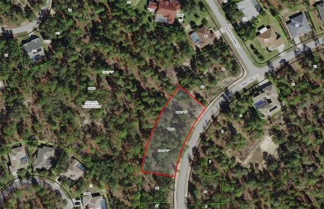 19 Candytuft Court, Homosassa, FL 34446 (MLS #U8083409) :: Premium Properties Real Estate Services