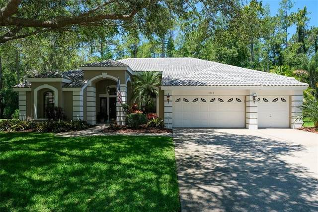 3969 Brightside Lane, Palm Harbor, FL 34685 (MLS #U8083492) :: The A Team of Charles Rutenberg Realty