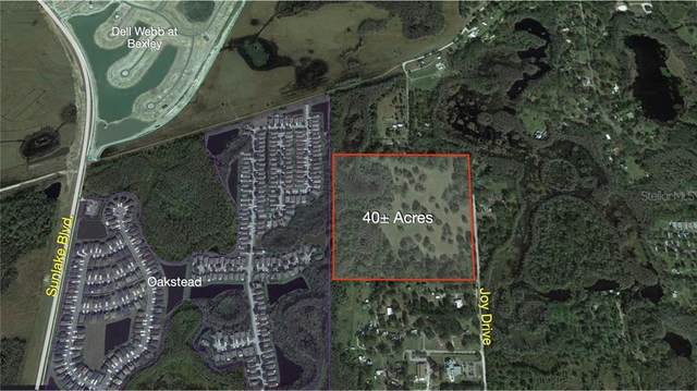 0 Joy Drive, Land O Lakes, FL 34638 (MLS #U8083511) :: Bustamante Real Estate